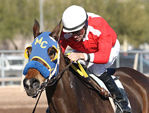 E Z Kitty wins the 2013 Kachina Handicap.