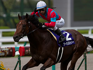 Earnestly wins the Breeders Cup Challenge Japan.