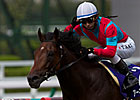 Earnestly Gains BC Turf Slot With Japan Win 