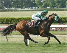 Ecclesiastic Gives Jerkens Jaipur Surprise