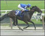 E Dubai Earns First Graded Stakes Win in Dwyer