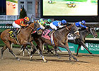 Effinex Lands Grade I in Clark Handicap