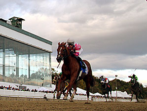 Eighttofasttocatch wins the 2014 Maryland Million Classic.
