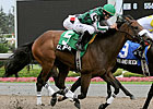 El Brujo Favored in Coronation Futurity