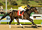 El Gato Malo Has Lone Star Derby Appeal