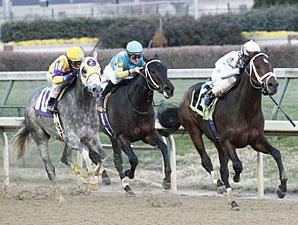 El Grayling (left) finishes 2nd in Churchill ALW 11/27/10.