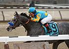 Withers Favorite El Kabeir Breezes at Belmont