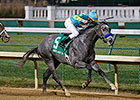 El Kabeir Gets Early Start on Derby Trail