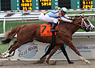 El Padrino Ready for Gulfstream Comeback