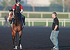 Dubai World Cup: David Marnane