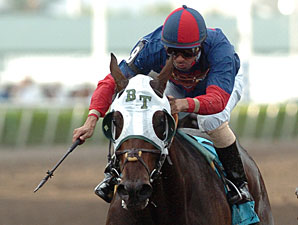 Elysium Fields Works Toward Fla. Derby