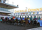 Emerald Announces 2015 Horsemen Incentives