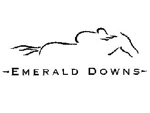 Emerald Downs Has $2 Million in Stakes