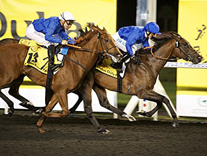Godolphin Pair Top U.A.E. Guineas Field