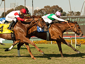 Emollient  wins the 2013 American Oaks.