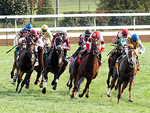 Emotional Kitten wins an Allowance Race at Keeneland 10/12/2014