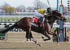 Empire Dreams Stretches Out in New York Derb