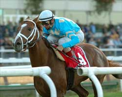 English Channel Rolls Into Gulfstream Allowance Test