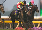 Erin Court Springs Surprise in Japanese Oaks