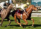 New Journeyman Van Dyke Wins at Santa Anita