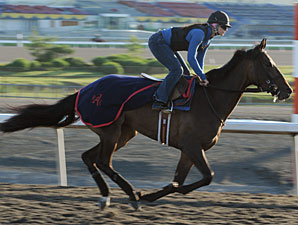 Ernfold at Woodbine on June 7, 2010.