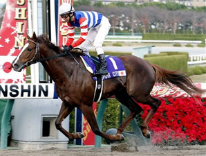 Espoir City Runs Away With Japan Cup Dirt