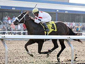 Eternal Rule wins the 2012 Karl Boyes Memorial.
