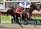 Euphony to Defend Title in Arlington Matron
