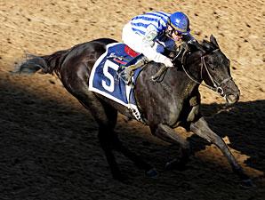 Euphony wins the 2009 Bayakoa Stakes.