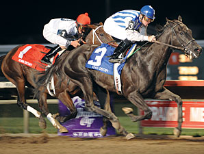 Spritely Likely Favorite in Molly Pitcher