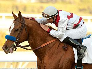 Euroears wins the 2011 Palos Verdes.