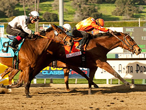 Evening Jewel wins the 2011 Sunshine Millions Distaff.