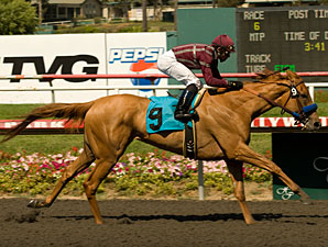 Evita Argentina wins the 2009 A Gleam.