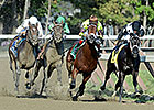 Saratoga Mischief to Return in Capossela
