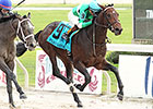 Exaggerator Holds in Delta Jackpot