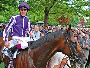 Excelebration Among Stars on Big Day at Ascot