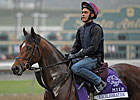 O&#39;Brien&#39;s Starters Lead Euro Exercise Nov. 1