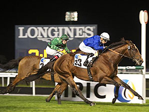 Excellent Result wins the 2014 Nova Stakes.
