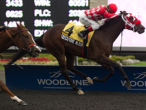Executive Allure wins the 2013 Franfreluche Stakes.