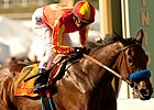 Baffert Shrugs Off Home Track Edge in Cup