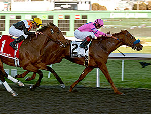 Exit Stage Left wins the 2013 California Derby.