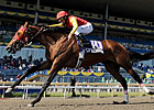 Royally-bred &#39;Leopard&#39; Eyes Queen&#39;s Plate