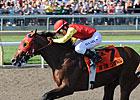 13 Entered in Woodbine's Breeders' Stakes