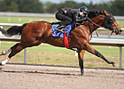 Woods&#39; Juveniles Shine in F-T Under Tack Show