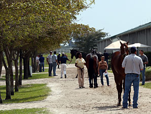 Fasig-Tipton Sale Average, Median Up