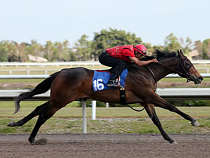 Seven Work Fastest Furlong at Fasig-Tipton