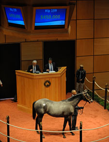 Medaglia d'Oro Colt Brings $450,000 at F-T