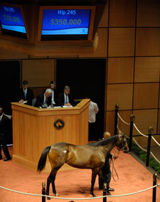 Medaglia d'Oro Filly Brings $350,000 at F-T