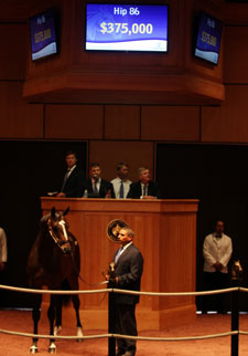 Gross, Average Rise at F-T July Yearling Sale