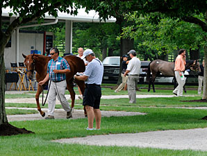 F-T Auction Kicks Off Yearling Selling Season